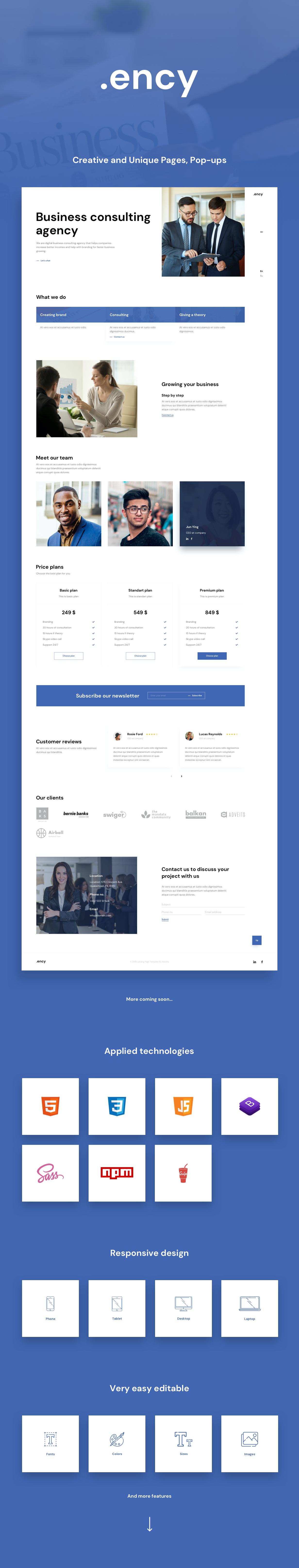 Ency Landing Page Presentation