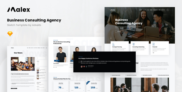 Malex – Business Consulting Agency Sketch Template
