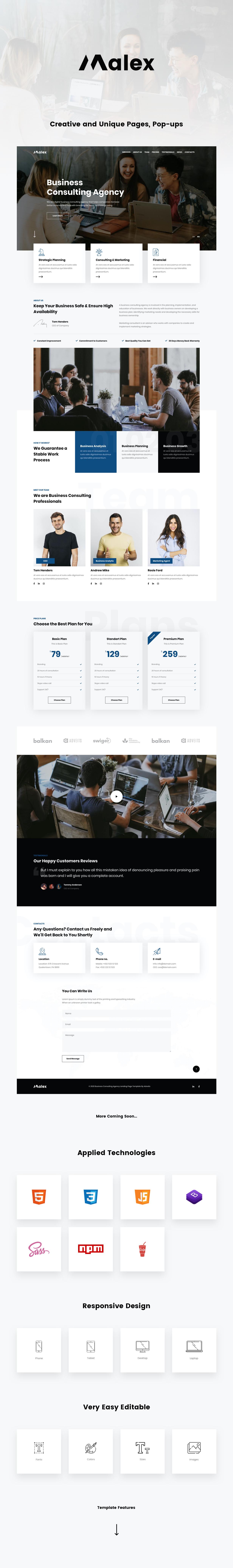Malex Landing Page Presentation